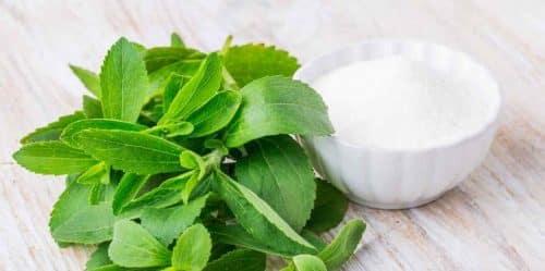 Stevia zaslađivač: uloga medne trave u medicini i kuhanju