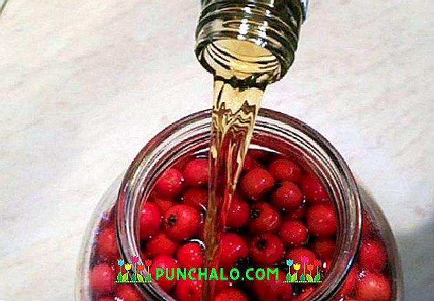 ulijevanje vode u čaše za hipertenziju infekcija hipertenzija