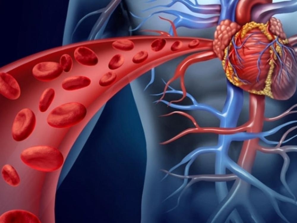 hipertenzija ajurveda ukloniti hipertenzija