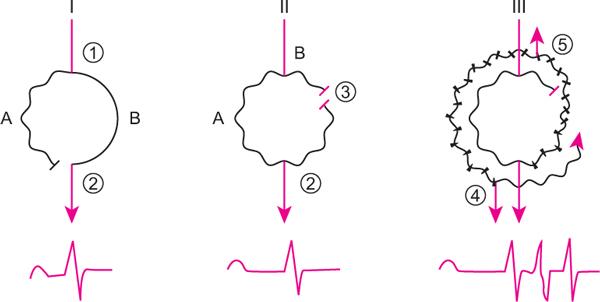 pripravci za hipertenziju i aritmije