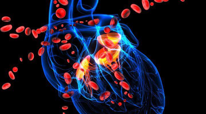 bolesti koje rezultiraju hipertenzije kao i kako pomoći brodovima u hipertenzije