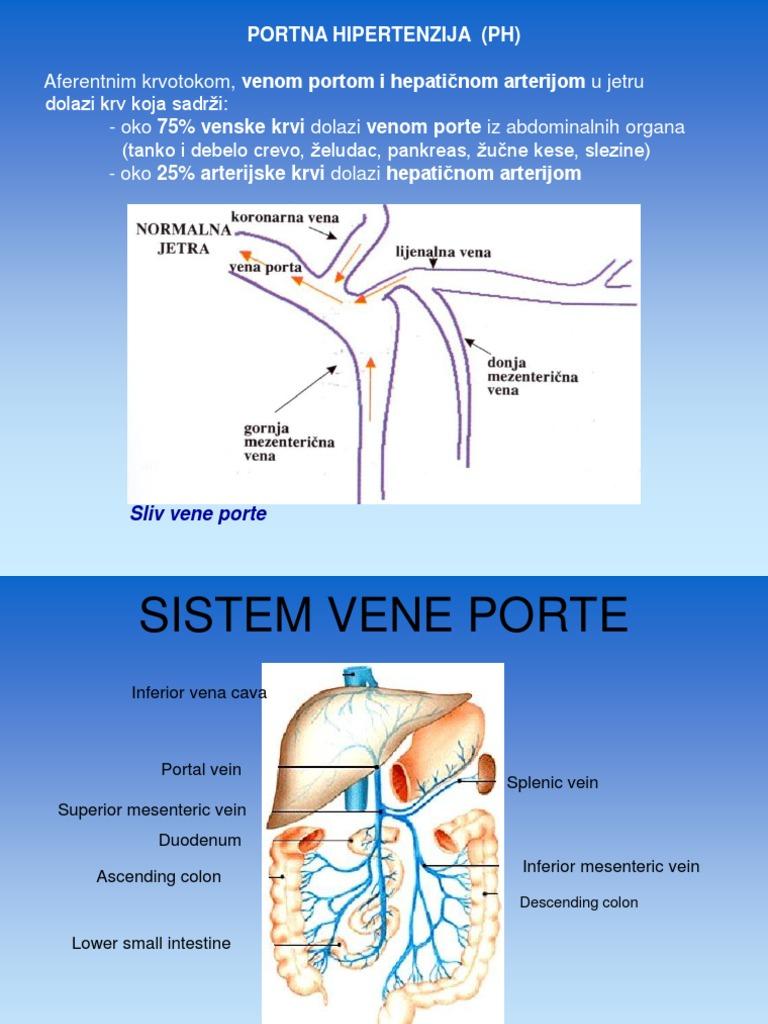 Sindrom vrata hipertenzije: simptomi, kako liječiti - Cista -