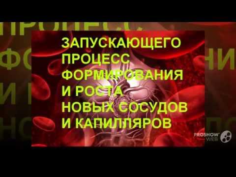 belogolovnik hipertenzija