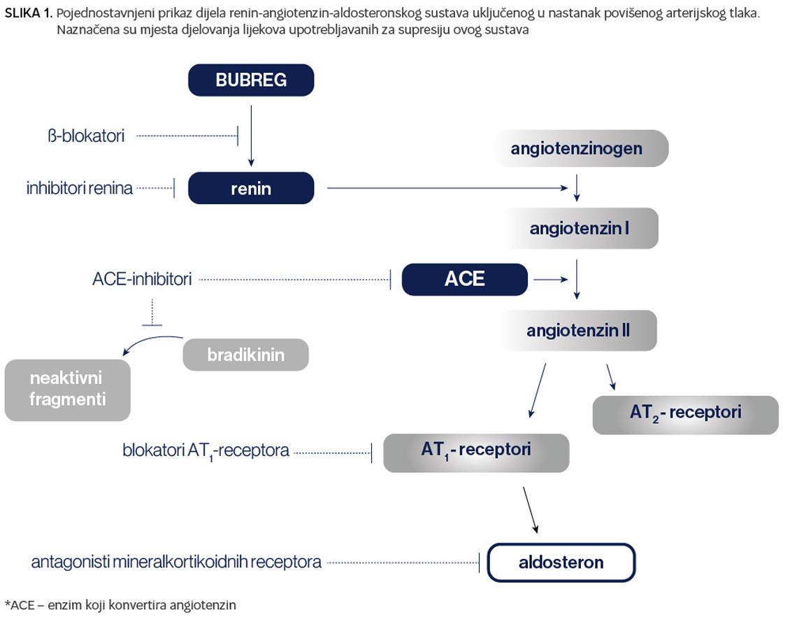 hipertenzija intravenski hipertenzija i srčani