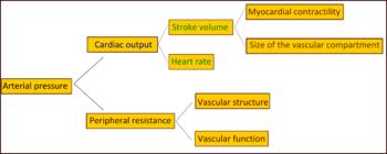 Održano predavanje o hipertenziji