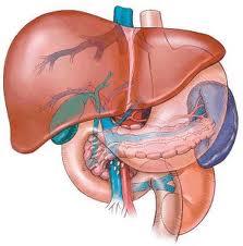 Hipertenzija žučnog mjehura ,hipoholesterol dijeta za hipertenziju
